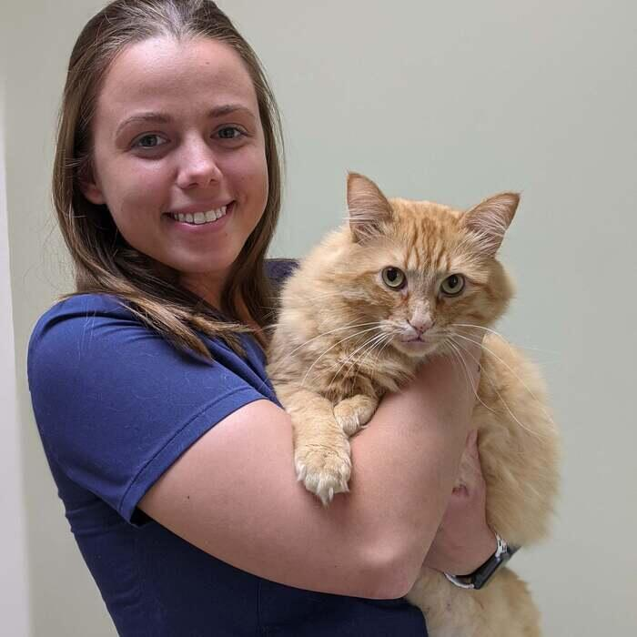 Kaitlyn </br> Veterinary Assistant photo