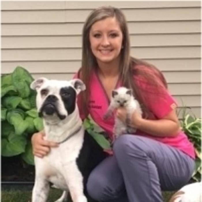 Lauren<br>Veterinary Assistant  photo